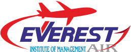 Everest Air Institute - Aviation courses in ahmedabad